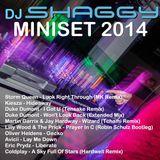 DJ Shaggy - DJ Shaggy Miniset 2014 Cover Art