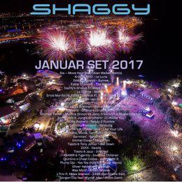 DJ Shaggy - DJ Shaggy New Year set Januar 2017 Cover Art