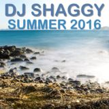 DJ Shaggy - DJ Shaggy Summer 2016  Set Cover Art